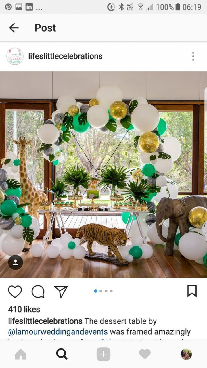 Themed jungle birthday