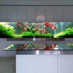 Terrarium ideas | Gardens