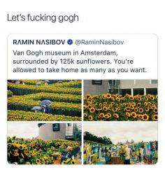 Memes   Humour