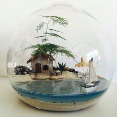 Beach terrarium | Gardens
