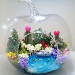 Average size Apple Terrarium with water effect Terrarium | Gardens