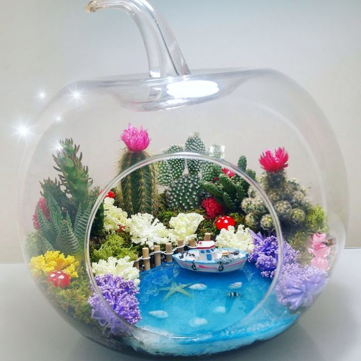 Average size Apple Terrarium with water effect Terrarium | Gardens