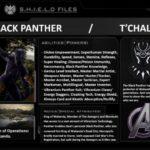 CHARACTER PROFILE: BLACK PANTHER | Marvel Comics
