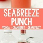 Seabreeze Cocktail Punch – this simple fresh cocktail | New Recipes