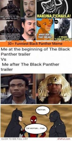 MORE THAN 30 MORE FUN BLACK PANTHER MEMES THAT ARE AS FUN AS HELL | Marvel Comics