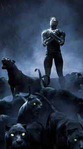 LOOK NOW THE BEST IMAGES OF BLACK PANTHER | Marvel Comics